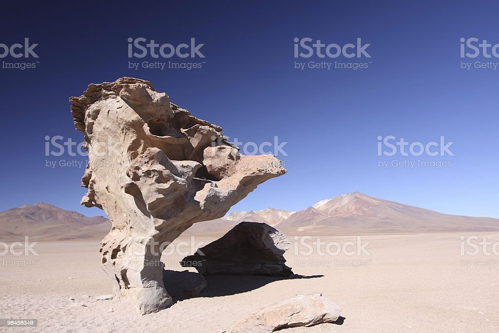 Strange stone in Uyuni, Bolivia royalty-free stock photo