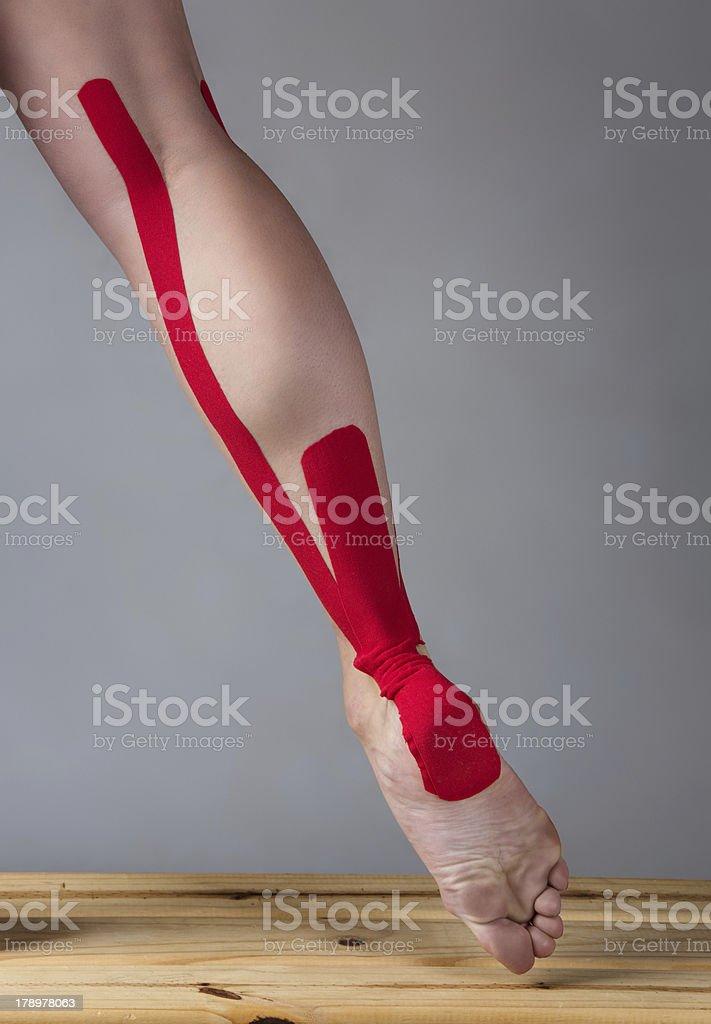 Strapping injured calf royalty-free stock photo