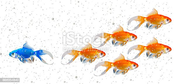 istock Strategy with Bubbles 668354840