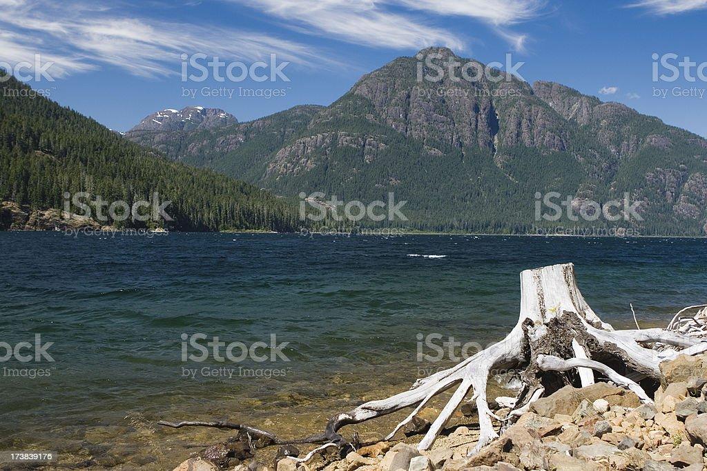 strathcona park royalty-free stock photo