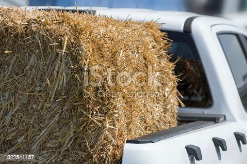 istock Straw bale by car. Harvesting cereals in the field. 1322541157