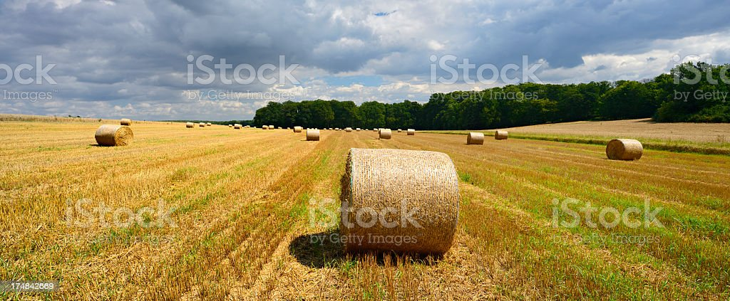 Straw Bale Harvest in Stubble Field under Dramatic Stormy Sky royalty-free stock photo