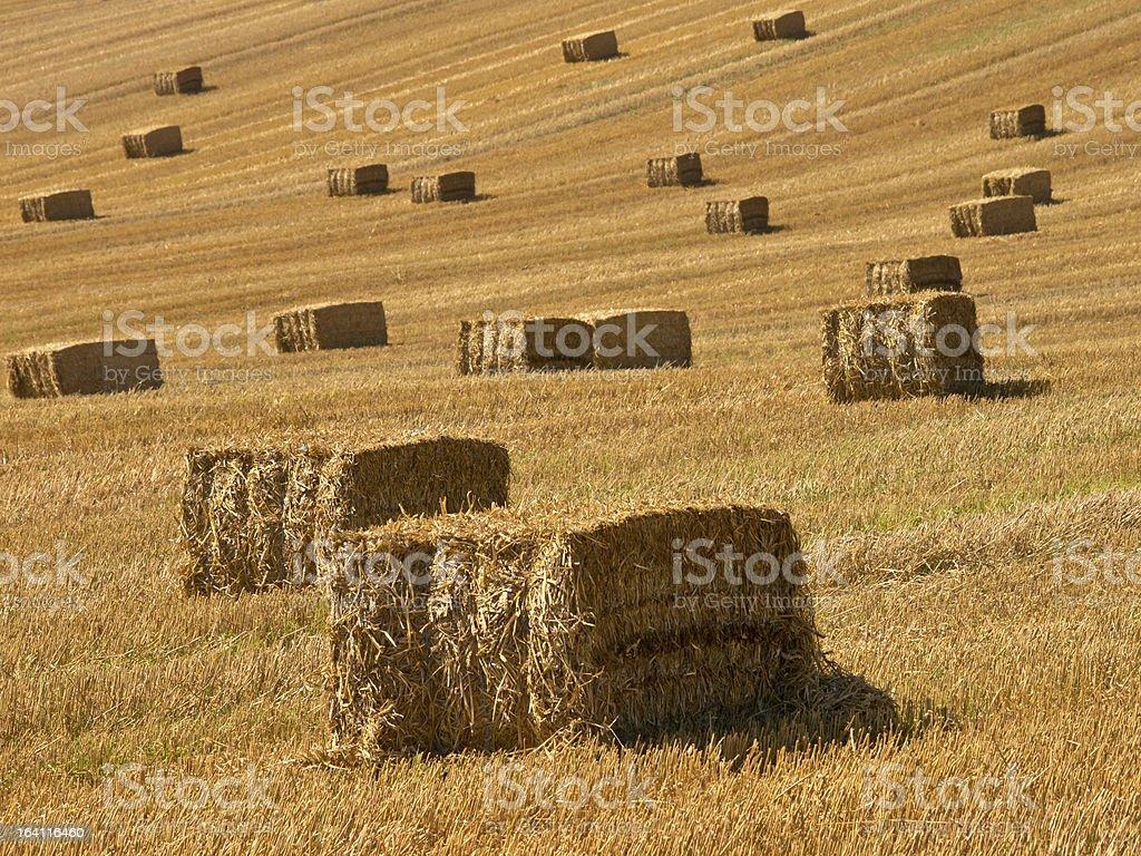 Straw bales background royalty-free stock photo