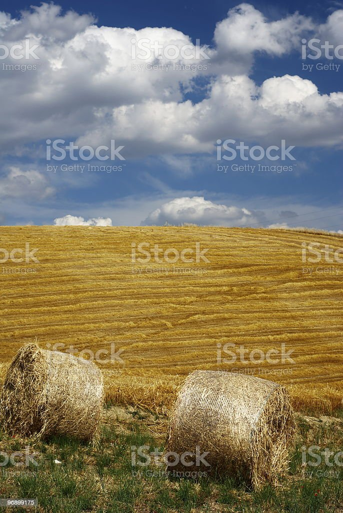 Straw bales in a field royalty-free stock photo