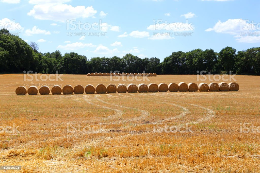 Straw bales in a row stock photo