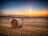 istock Straw bales in field at sunrise, North Yorkshire, England, Britain 1288581003