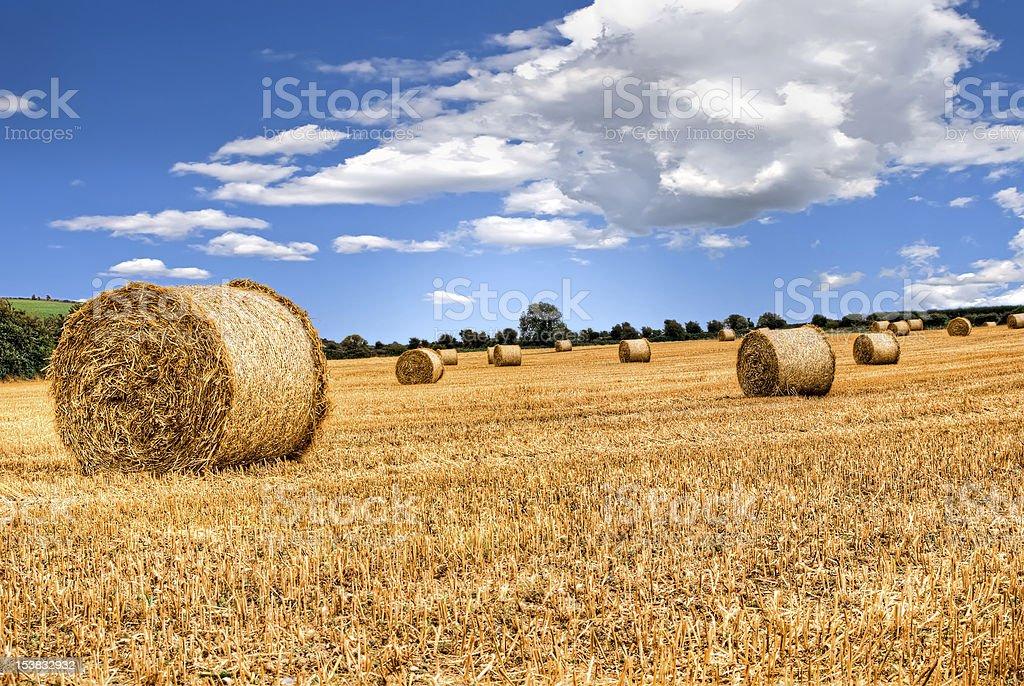 straw bales in irish countryside royalty-free stock photo