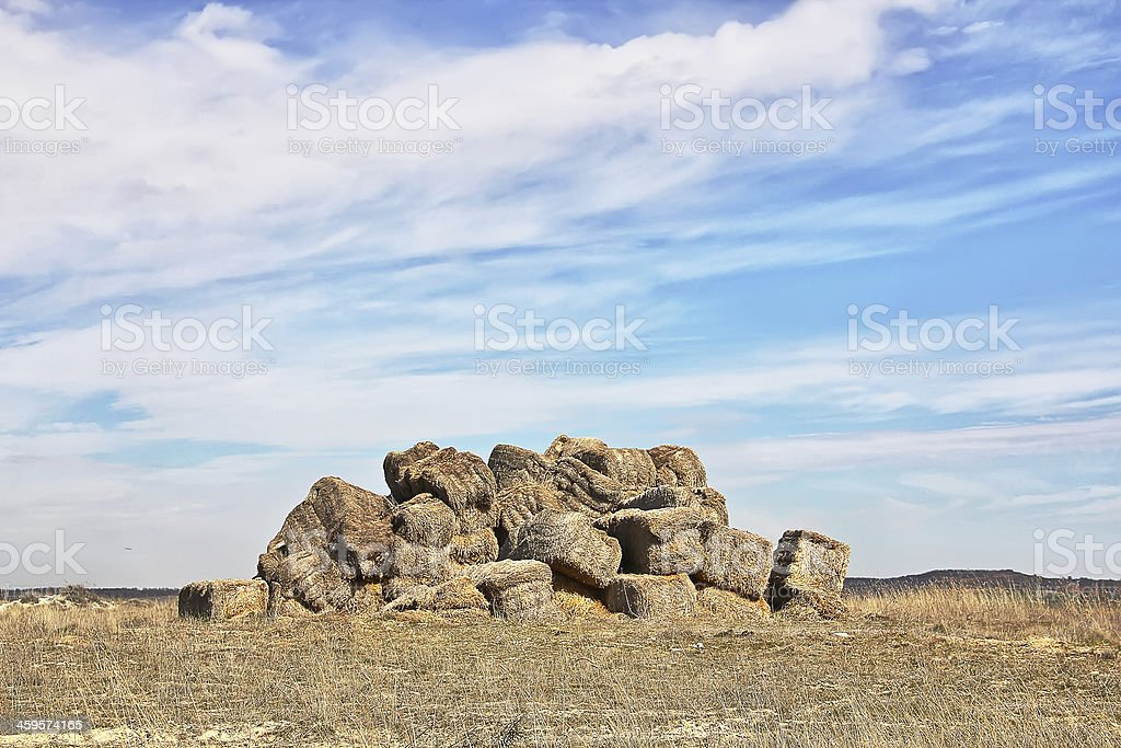 straw bales left in a dry field royalty-free stock photo