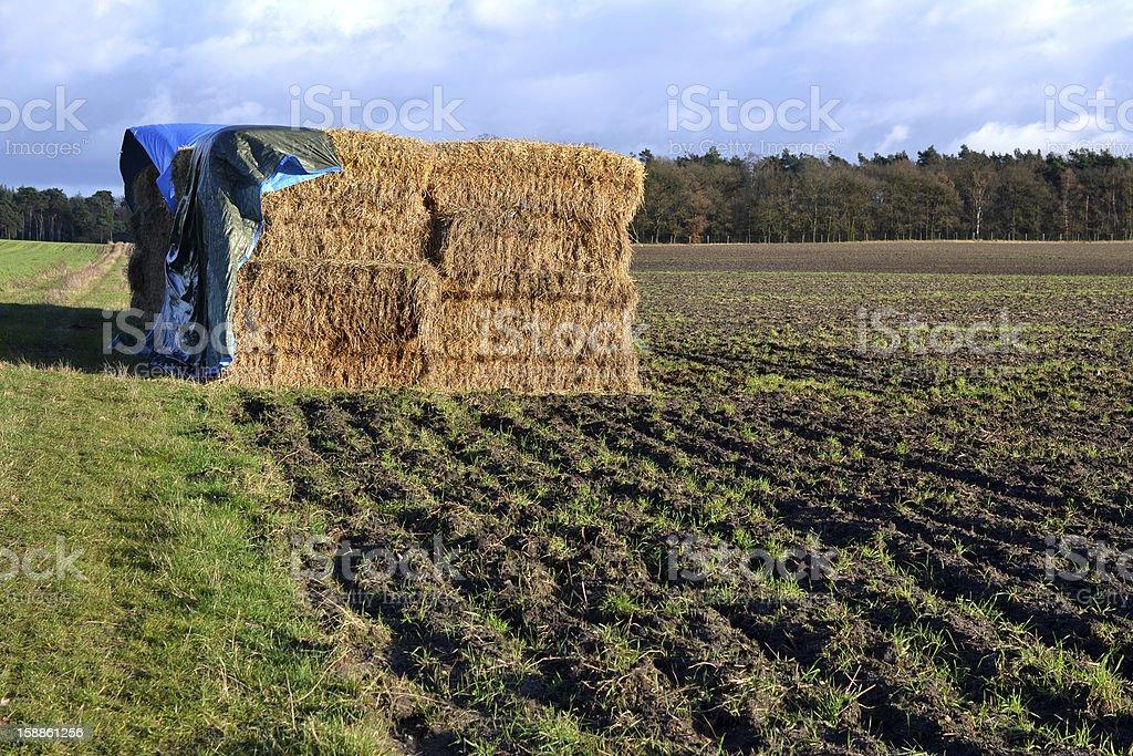 Straw bales under a tarpaulin. royalty-free stock photo