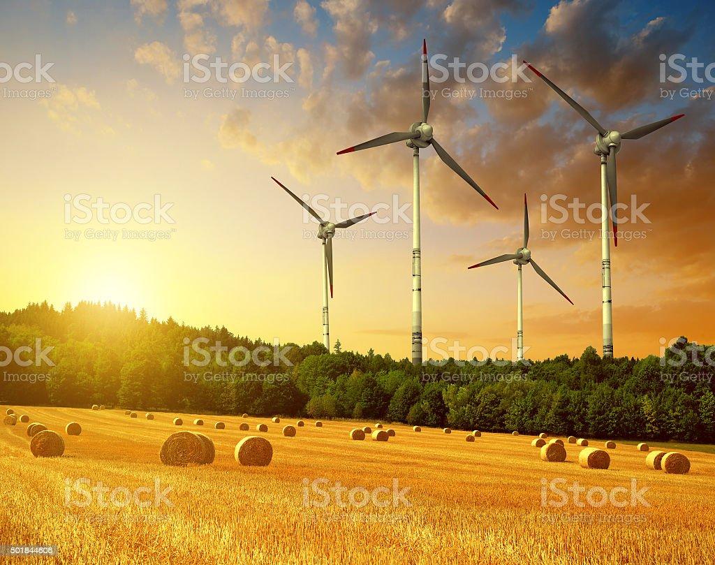 Straw bales with wind turbines on farmland stock photo