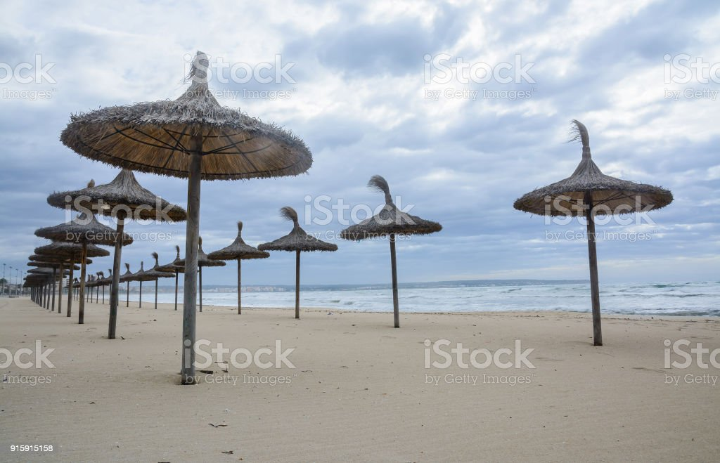 Straw parasols in front row stock photo