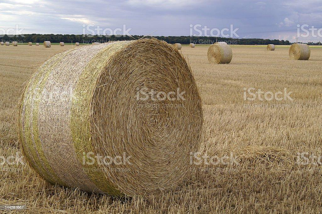 straw royalty-free stock photo
