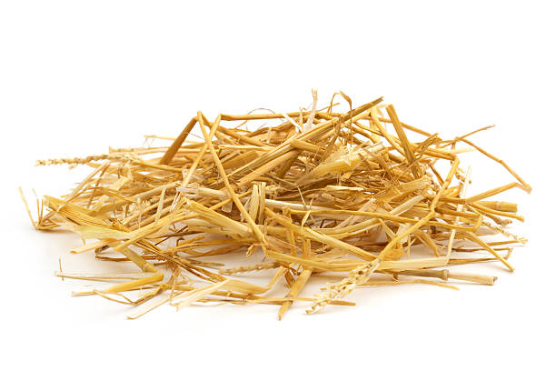 straw close up of straw isolated on white background hay stock pictures, royalty-free photos & images