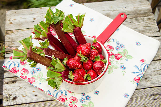 Strawberries and rhubarb in white pan stock photo