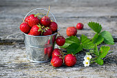 Strawberries in a decorative bucket on an old wooden surface.