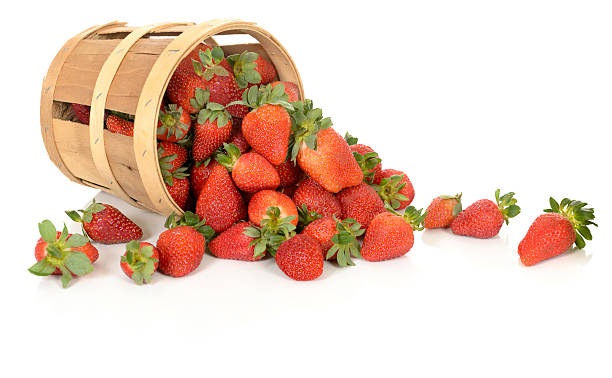 Strawberries in a Tipped Basket stock photo