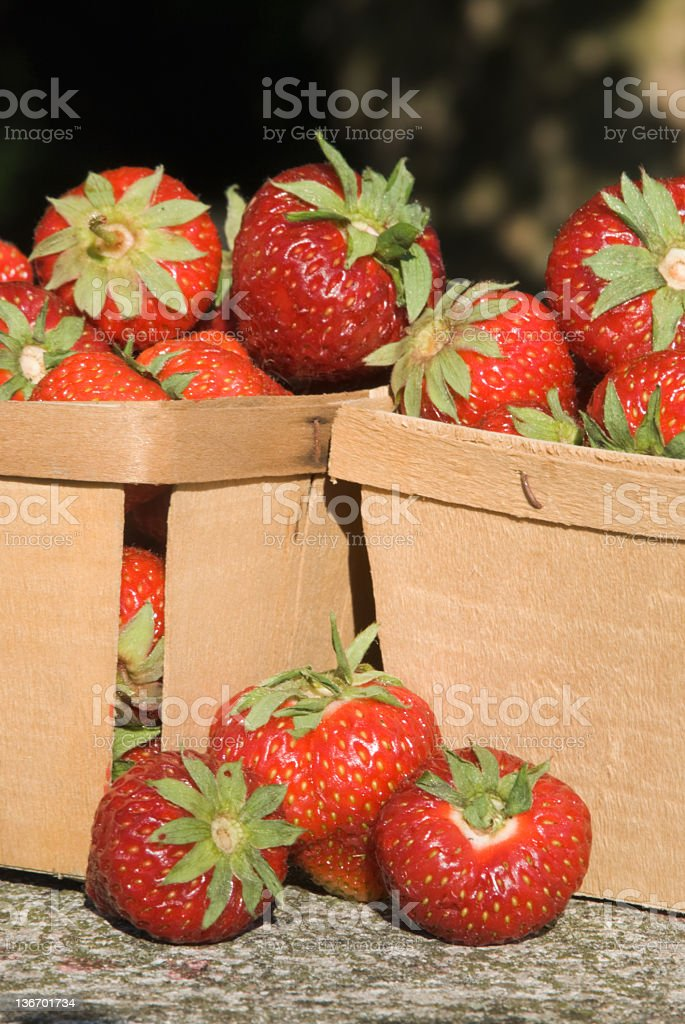 Strawberries in Boxes, Outside Sunlight Close Up royalty-free stock photo