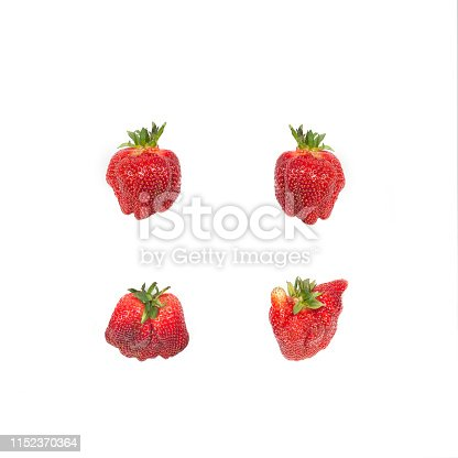 Pattern with red organic strawberries isolated on white. Natural ugly strawberries.Flat lay.Ugly food.