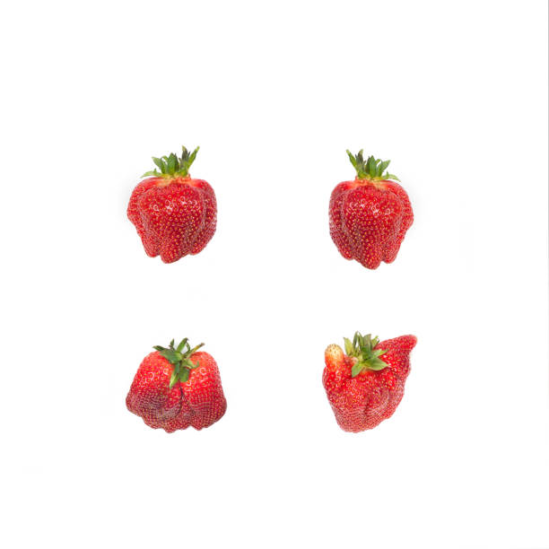 Strawberries isolated on white.Ugliness. Pattern with red organic strawberries isolated on white. Natural ugly strawberries.Flat lay.Ugly food. imperfection stock pictures, royalty-free photos & images