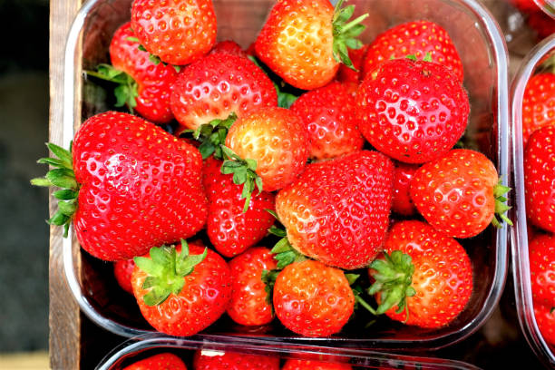 Strawberries. A punnet of Strawberries on display outside a greengrocer shop. fruit carton stock pictures, royalty-free photos & images