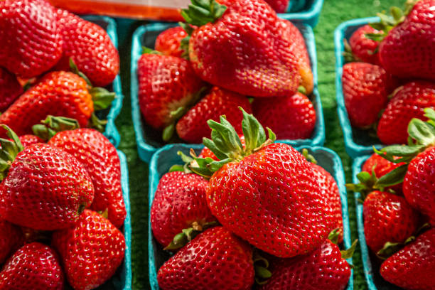Strawberries Punnets of vibrant red strawberries for sale on a market stall fruit carton stock pictures, royalty-free photos & images