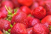 Organically grown strawberries. Shallow dof.