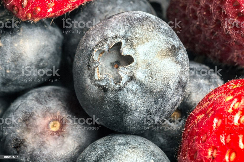Strawberry and Blueberry royalty-free stock photo