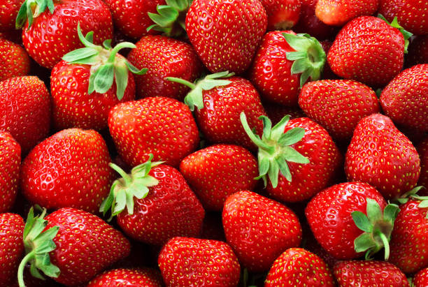 strawberry background. strawberries. - strawberry imagens e fotografias de stock