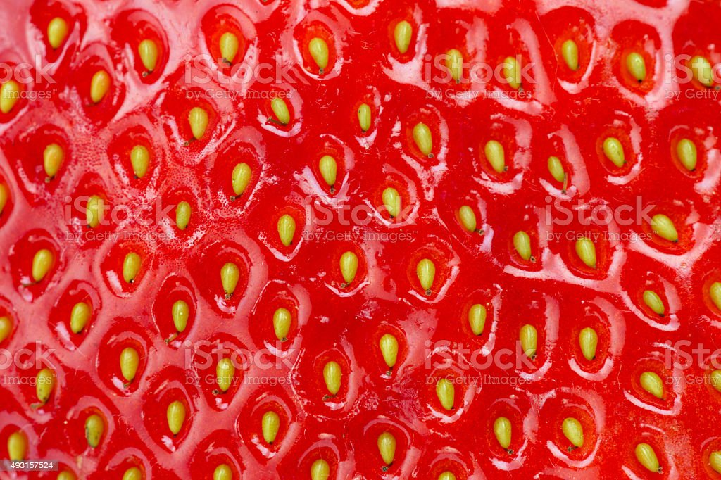 strawberry detail stock photo