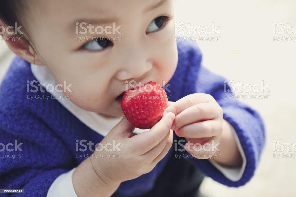 strawberry farm date stock photo