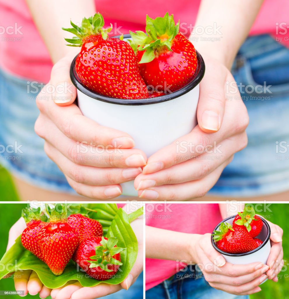 morango verão fresco na mão - Foto de stock de Adulto royalty-free