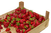 Ripe red strawberries in a wooden box, harvesting a new crop