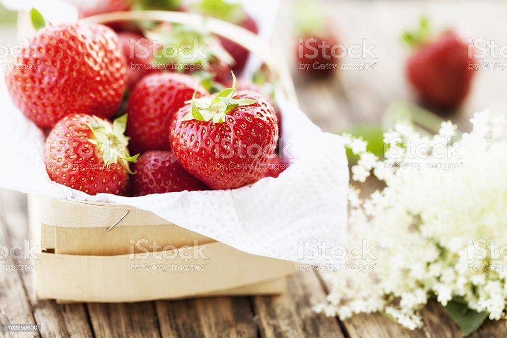 strawberry in basket garden harvest royalty-free stock photo