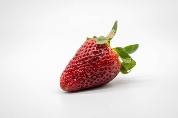 Erdbeere, isoliert auf weißem Hintergrund – Foto
