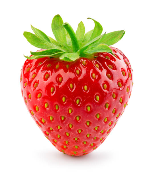 strawberry isolated. strawberry on white. - strawberry imagens e fotografias de stock