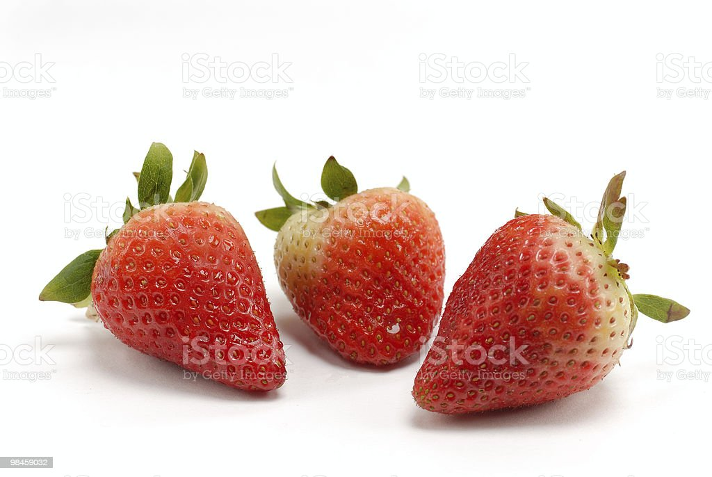 Strawberry meeting isolated on white background royalty-free stock photo