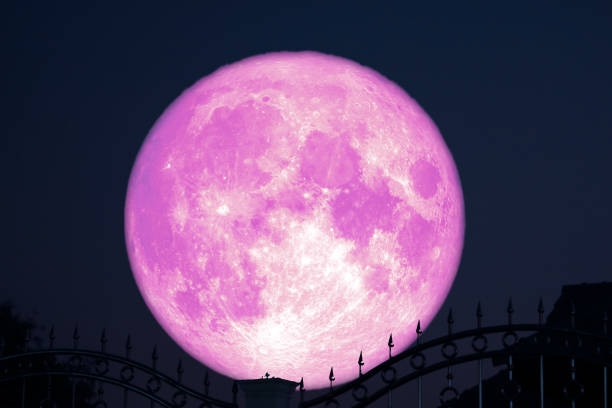 strawberry moon on night sky back silhouette stainless steel iron fence stock photo