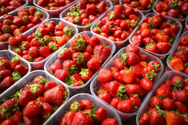 Strawberry pack stock photo
