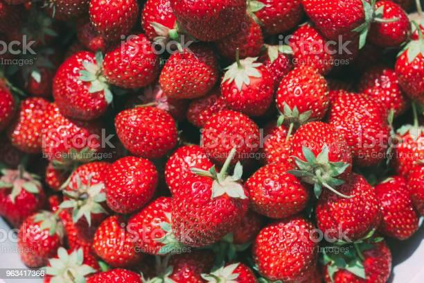 Truskawka Truskawki Tło Organicznych Jagód - zdjęcia stockowe i więcej obrazów Białoruś