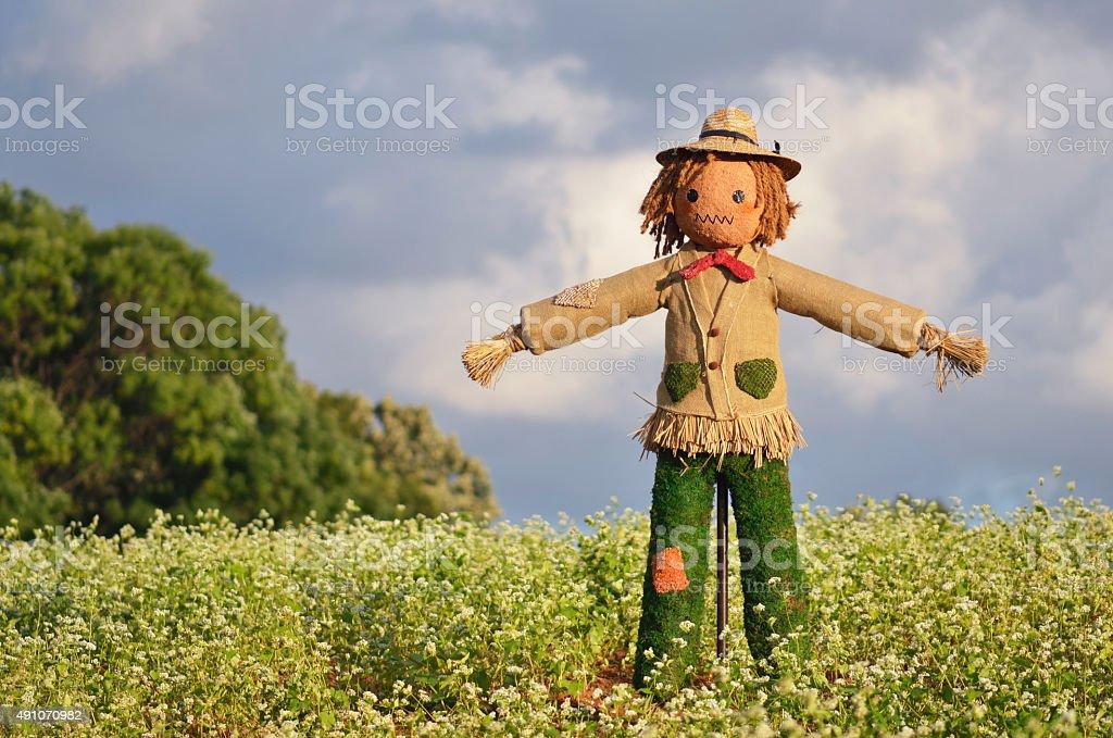 Strawman in farm stock photo