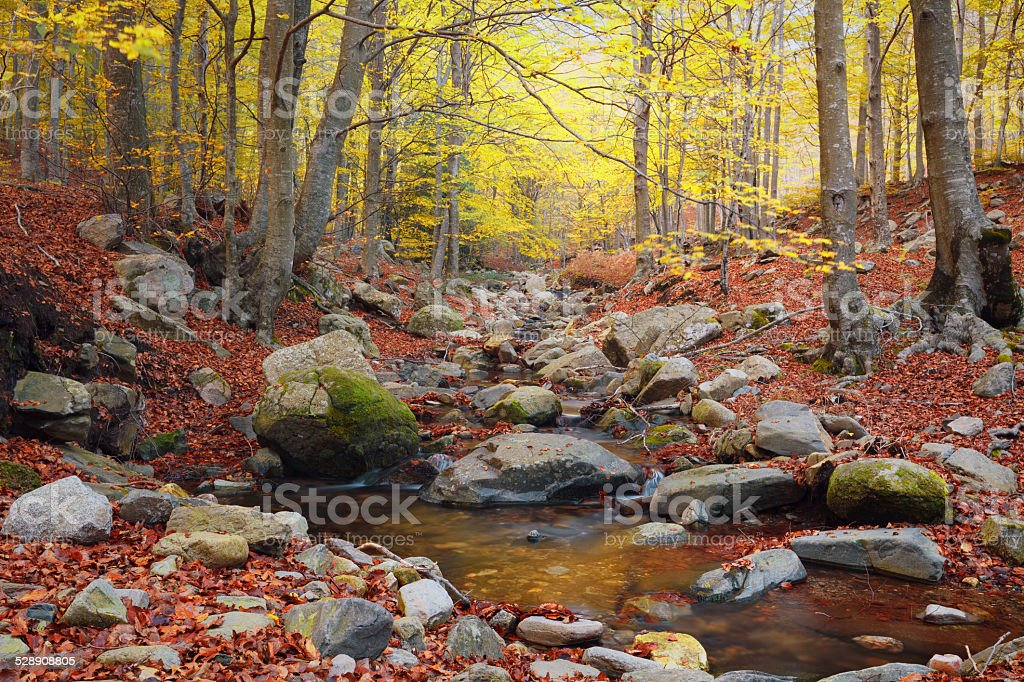 Stream and landscape of  Montseny Natural Park, Spain stock photo
