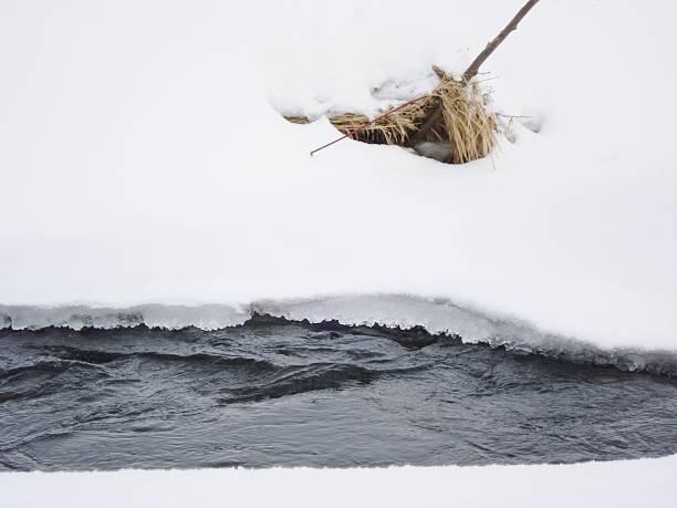 Stream Flowing Through Snow stock photo