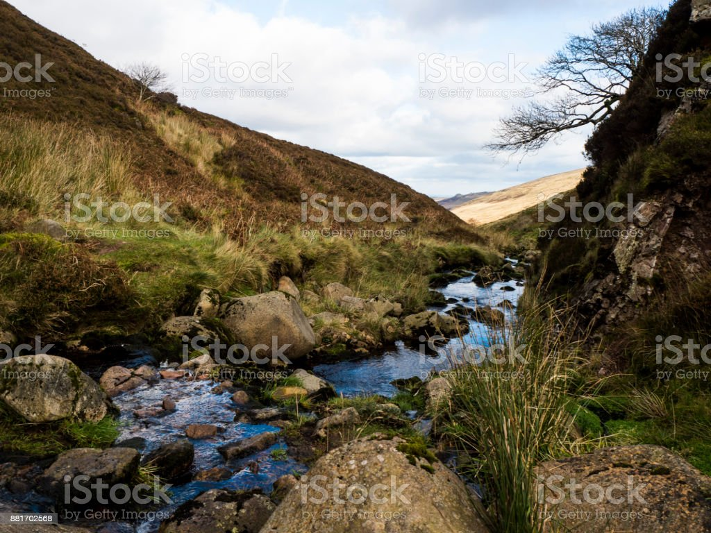 Stream, Grass, Trees & Rocks stock photo