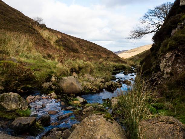 Stream, Grass, Trees & Rocks stock photo