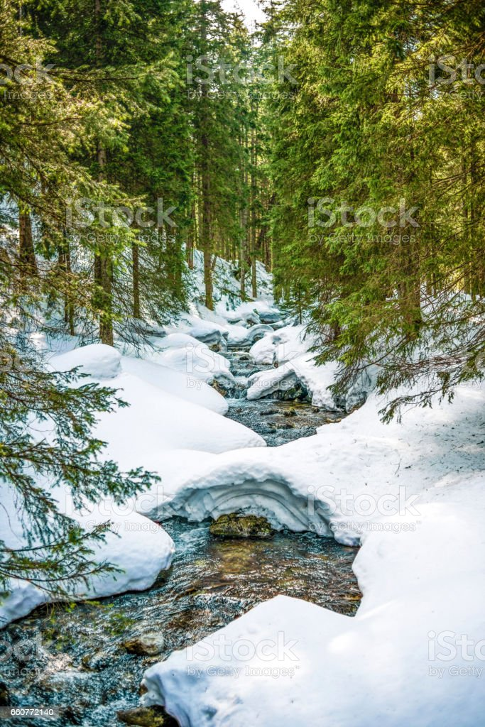 Stream in a forest, winter time, Polish mountains Tatry. stock photo
