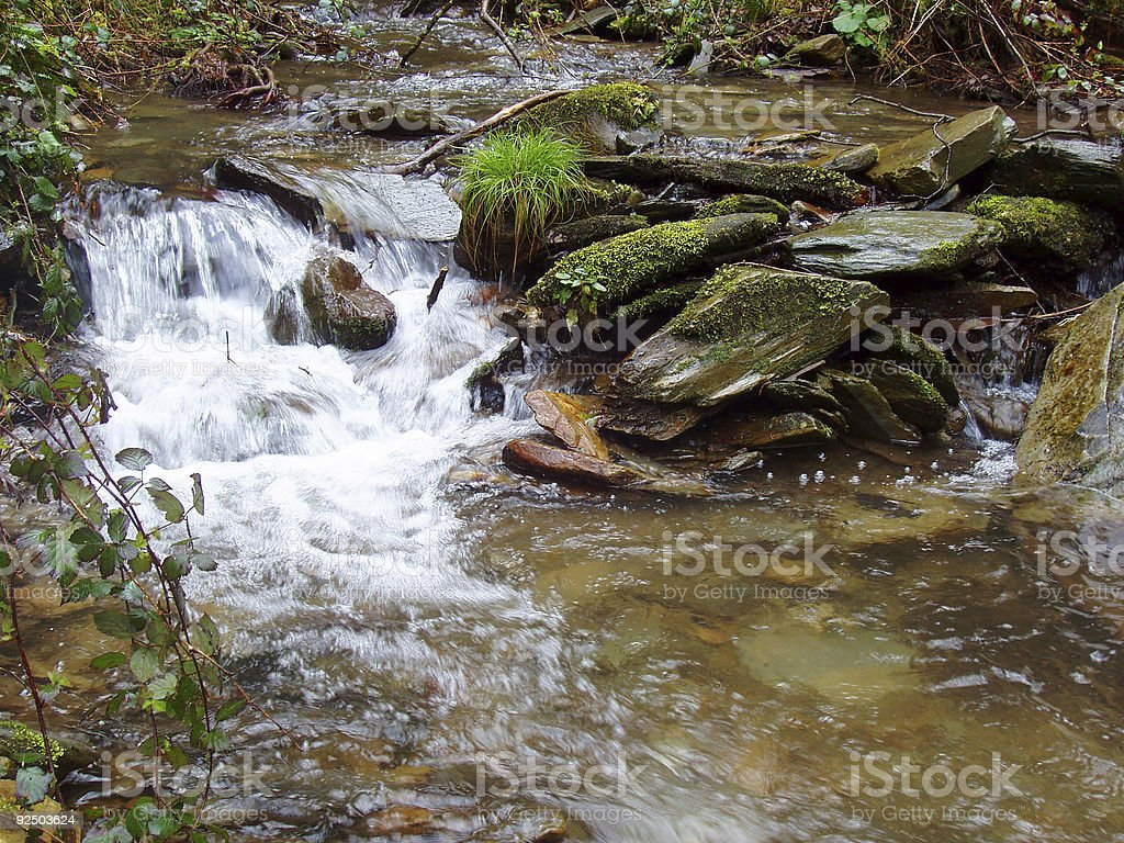 stream in Asturias, forest royalty-free stock photo