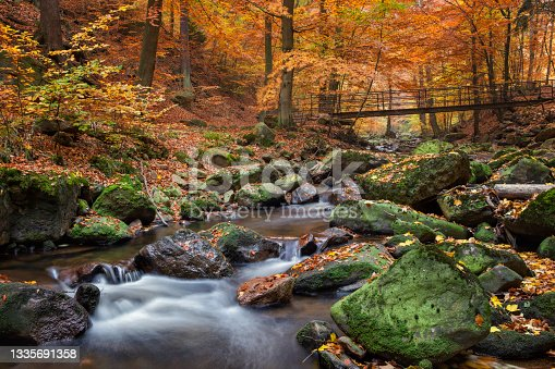istock Stream in foggy Forest at autumn - Nationalpark Harz 1335691358