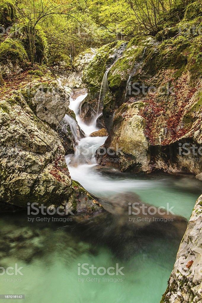 Stream in Lepena, Julian alps royalty-free stock photo