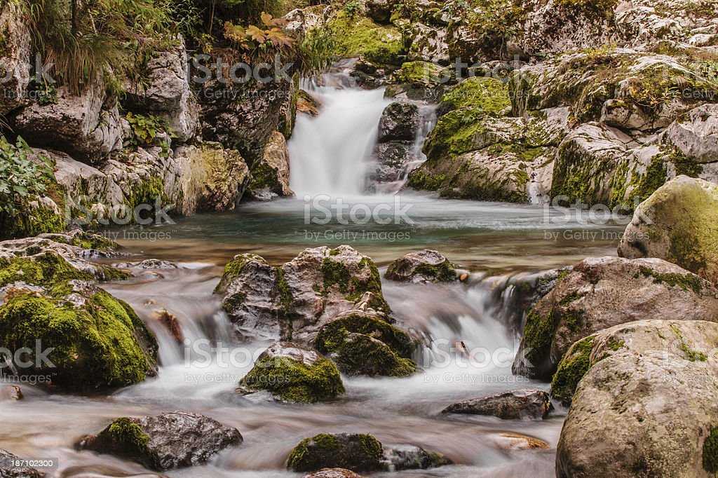 Stream in Lepena, Slovenia, Europe. royalty-free stock photo
