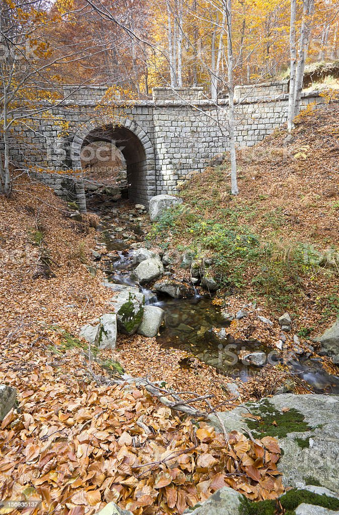 Stream in Montseny Natural Park royalty-free stock photo